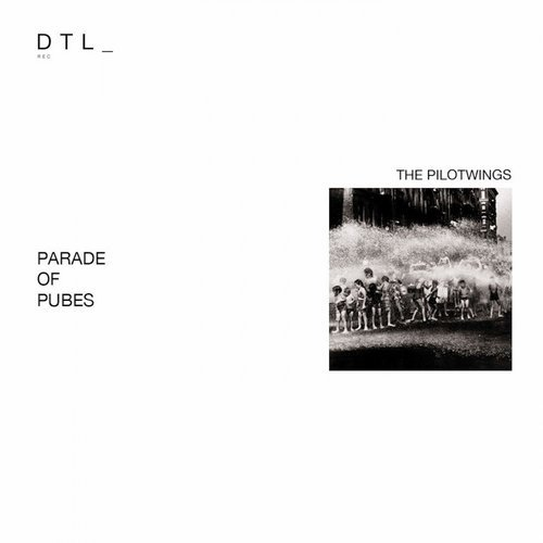 DTL - Pilotwings remix